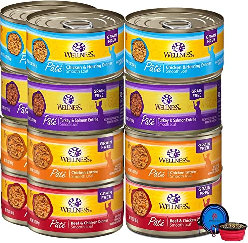 Wellness Natural Premium Canned Cat Wet Food Pate – 12 Pack Cans Variety Bundle Pack 4 Flavor – Chicken,Beef, Salmon Turkey W HS Pet Food Bowl – 3 Ounce
