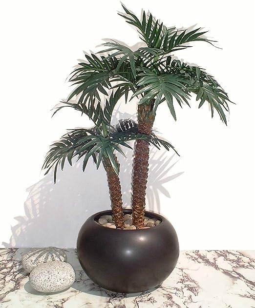/Árbol Artificial SIN MACETA 56cm Kurrajong Palma