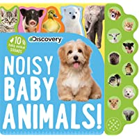 Discovery: Noisy Baby Animals!