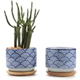 T4U 3 Inch Ceramic Japanese Style Serial No.3 succulent Plant Pot/Cactus Plant Pot Flower Pot/Container/Planter White Package 1 Pack of 2