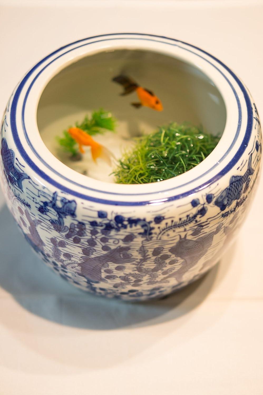 Hibachi-pequeña cerámica y porcelana japonesa pecera Togei Ikebana Yakimono carpa patrón de escritura a mano: Amazon.es: Hogar