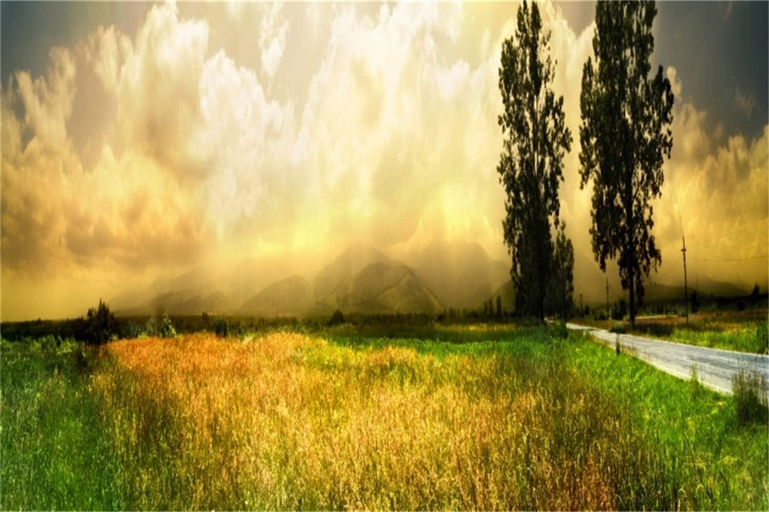 10x6.5ft Outdoor Farmland Highway Scenic Backdrop Polyester Dusk Golden Sunset Glow Hazy Mountains Trees Background Summer Scenery Landscape Wallpaper Event Activities Shoot Party Decoration