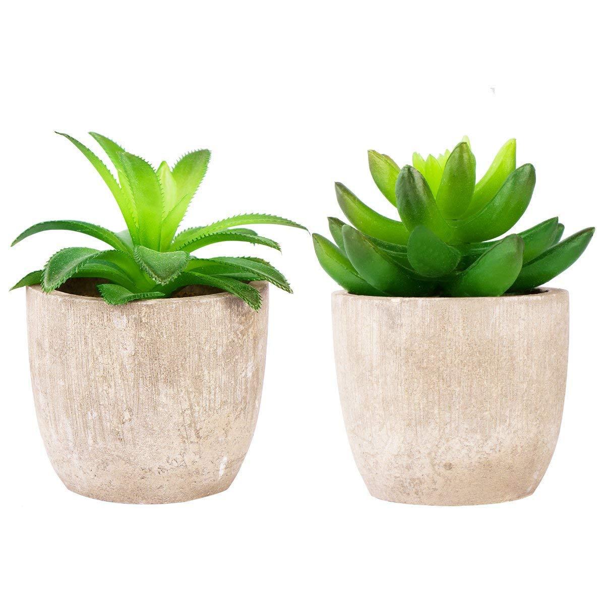 Drhob Mini Artificial Succulents Plants,Plastic Lifelike Fake Cactus Aloe Plants/Faux Succulent Plants in Pot for Wedding Home Decor (2 Set, Green)
