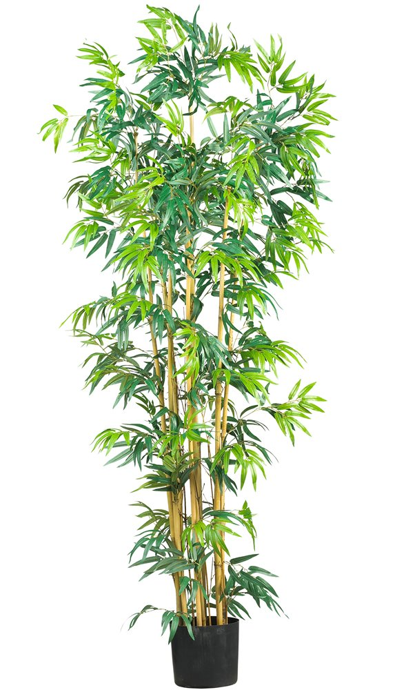 Nearly Natural 5214 Bambusa Bamboo Silk Tree, 6-Feet, Green by Nearly Natural