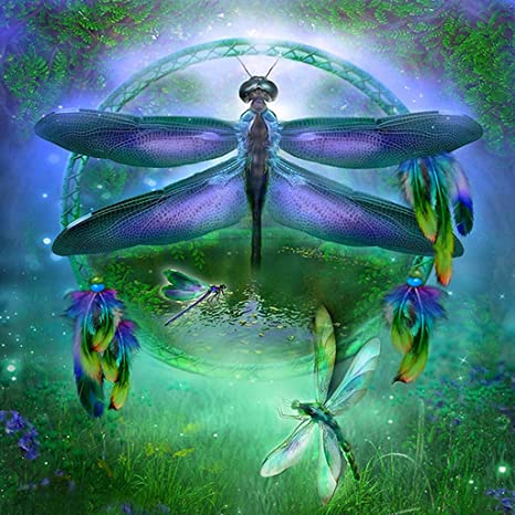 DIY 5D Diamond Painting Beach by Number Kits Full Drill Cross Stitch Crystal Rhinestone Embroidery Pictures Arts Craft for Adults Wall Decor Gift Dragonfly 30x40cm