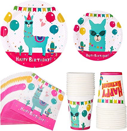 Fiesta Plates and Napkins for 24 Guests for Mexican Party Decorations Cinco De Mayo Supplies 24 9 Dinner Plates 24 7 Dessert Plates 24 9 oz Cups and 50 Luncheon Napkins Birthday Themed Baby Shower