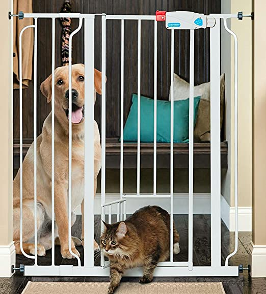 5 Amazing Puppy Amp Dog Gates For Indoor Amp Outdoor Use