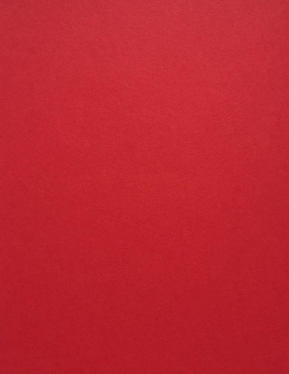 50 Sheets from Cardstock Warehouse Premium Cover Pink Lemonade Cardstock Paper 8.5 x 11 inch 65 lb