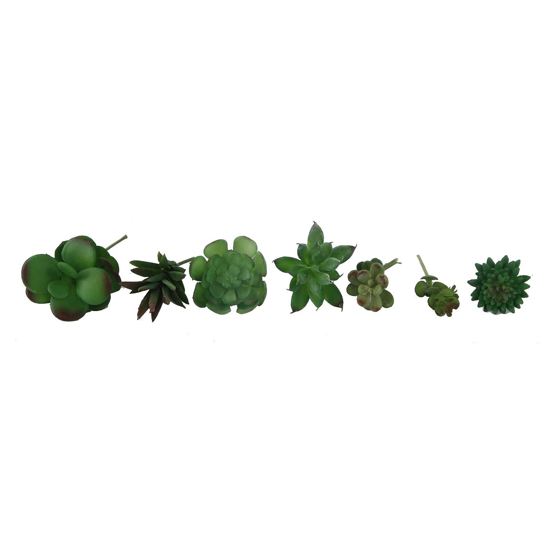 Flora Bunda 7PCS DIY Artificial Succulent Faux Succulents in PVC BOXSUCCULENTS in PVC Box