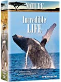Nature: Incredible Life (6Xdvds)