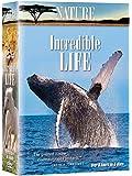 Nature: Incredible Life (6pc)