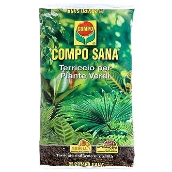 Compo Sana - Sustrato para plantas verdes, bolsa de 20 l: Amazon.es: Jardín