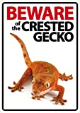 Beware of The Crested Gecko Plastic Sign