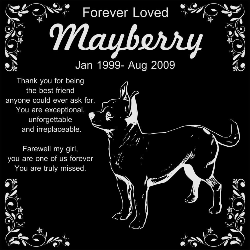 Personalized Chihuahua Pet Memorial 12''x12'' Engraved Black Granite Grave Marker Head Stone Plaque MAY1