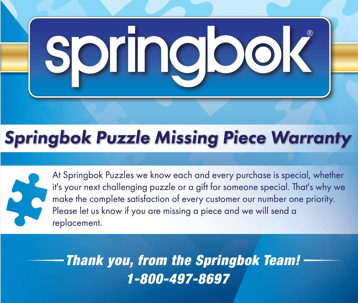Holiday Stocking Stuffer Springbok Puzzles 8.5 x 11 inches Mini Travel Size Puzzle New 120 Piece Mini Jigsaw Puzzle Cake Pops