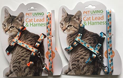 Pet Correa y arnés para Gato: Amazon.es: Productos para mascotas