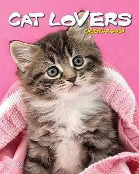 Chartwell Series - Calendario 2018 para amante de los gatos: Amazon.es: Oficina y papelería
