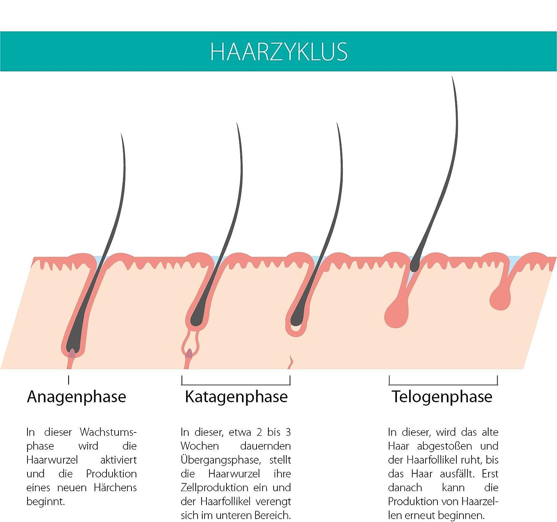 Beautylines Wimpern Serum - Wimpernseren & Augenbrauenseren