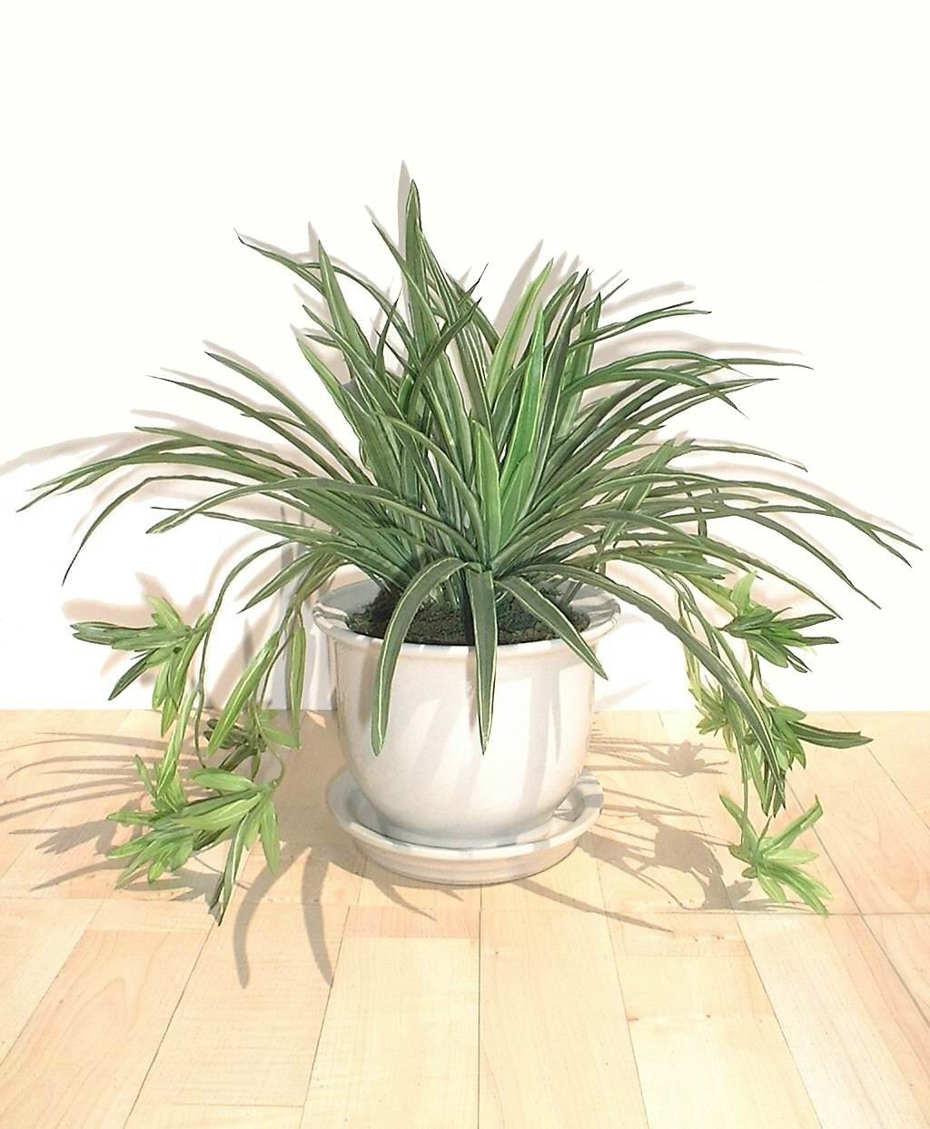 Neuhaus Decor 14'' Spider Plant, Artificial Bush (WITHOUT POT)