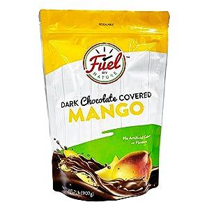 Fuel by Nature Dark Chocolate Covered Dried Mango, Healthy Choco Mango Snack, Bulk Dried Fruit, 2 lb