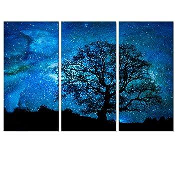 Starry space canvas wall artlandscape home decornature landscape picture artcanvas