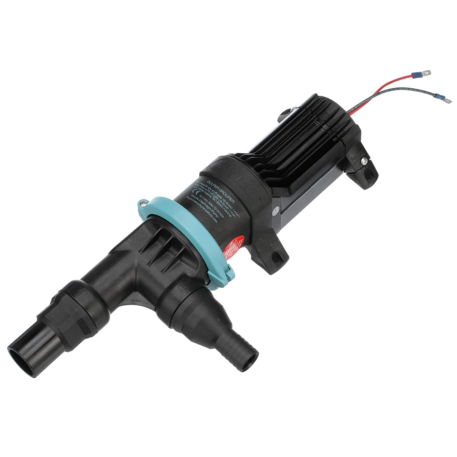 Livewell or Baitwell 1 Inch//1 /½ Inch Hose Connections Whale BP4772 Gulper Grouper Mk 3 Fishbox Discharge Pump 4.22 GPM Flow Rate 12V DC 10 Amps Evacuation Pump for Fishbox