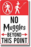 No Muggles Beyond This Point - NEW Humor Magic Wizard Poster