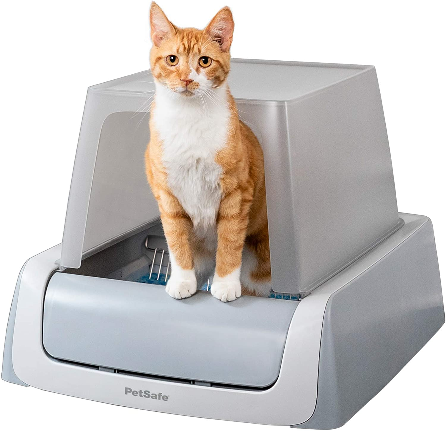 Top 10 Best Self Cleaning Litter Box For Large Cats [Updated December 2020] 1