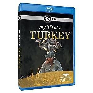 Nature: My Life as a Turkey [Blu-ray]