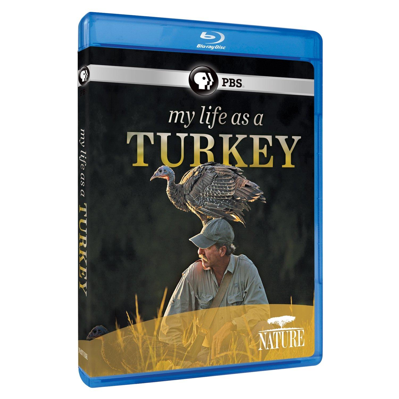 Blu-ray : Nature: My Life As A Turkey (Blu-ray)