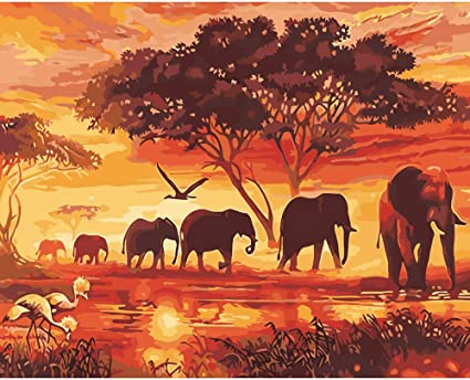 Amazon Com Various Elephant Series Paint By Numbers For Adults Kids Beginners Easy Acrylic On Canvas 16 X20 With Paints And Brushes Sunset Elephant Without Frame