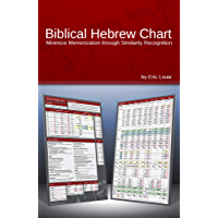 Biblical Hebrew Chart: Minimize memorization through similarity recognition (Eric Louw Biblical Language Charts)