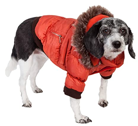 f70e3ca10 Amazon.com   PET LIFE Classic Metallic Fashion Pet Dog Coat Jacket ...