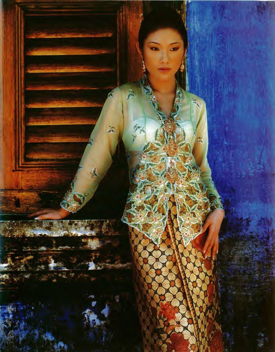 Nyonya kebaya dress pictures