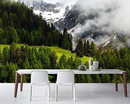 Decorazioni Per Casa Montagna : Yosot svizzera montagne foresta natura foto 3d carta da parati