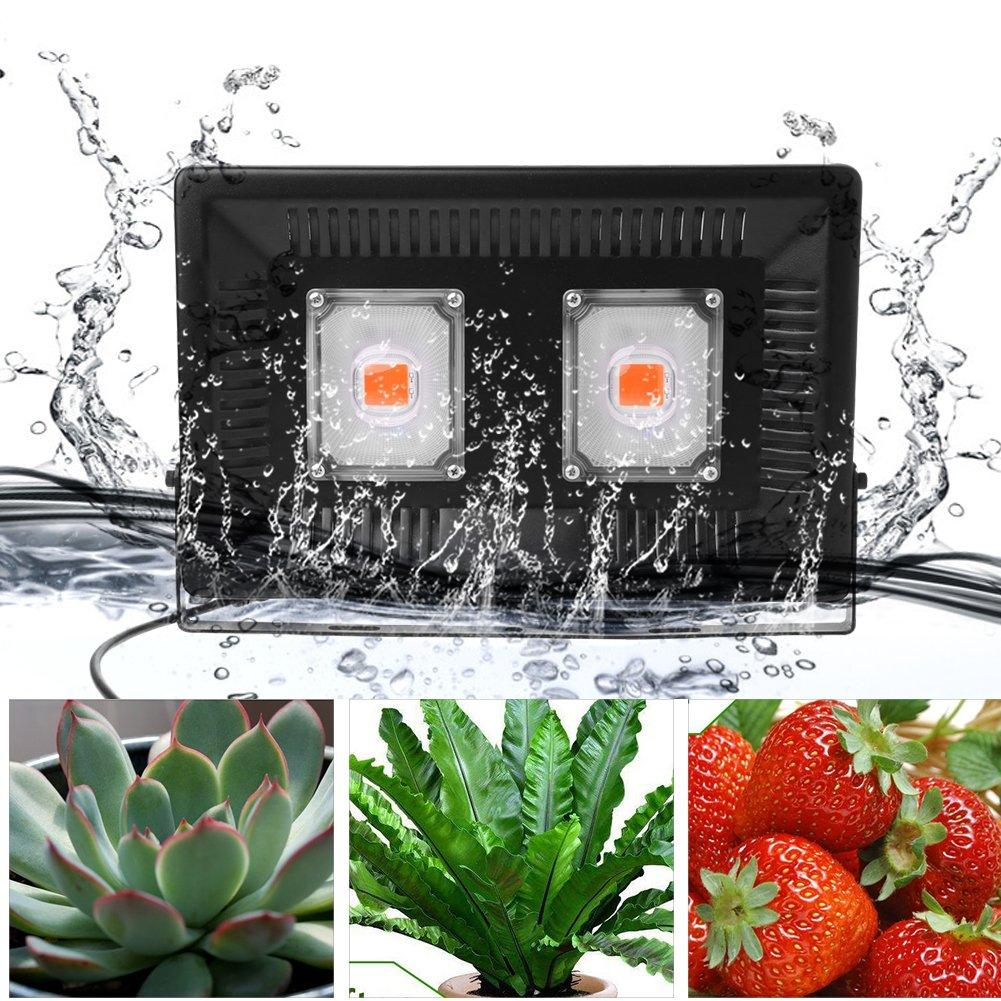 植物育成LEDライト P67全スペクトルLED 100W 防水 室内室外両用 室内野菜工場/植物農園/植物栽培工場 急速放熱 省エネ B078MZC6DL