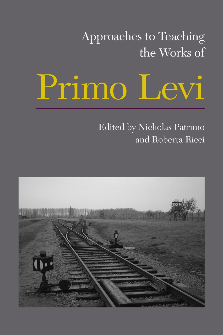 Amazon approaches to teaching the works of primo levi amazon approaches to teaching the works of primo levi approaches to teaching world literature 9781603291484 nicholas patruno roberta ricci books gamestrikefo Gallery