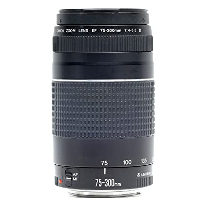 The 8 best canon ef telephoto zoom lens