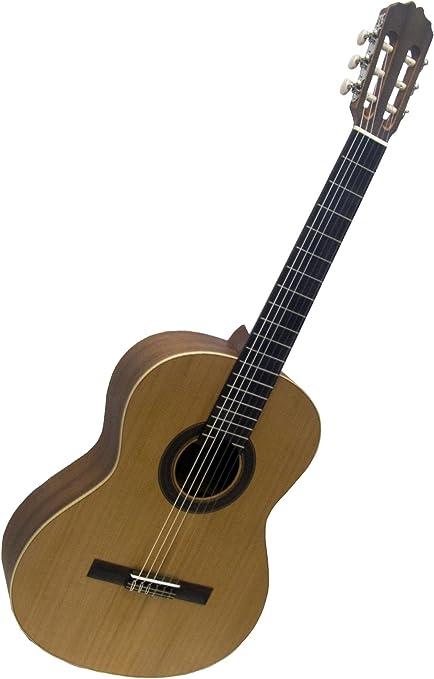 Prodipe guitars Student 44 guitarra española: Amazon.es ...