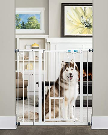 Amazoncom Carlson Extra Tall Walk Through Pet Gate With Small Pet