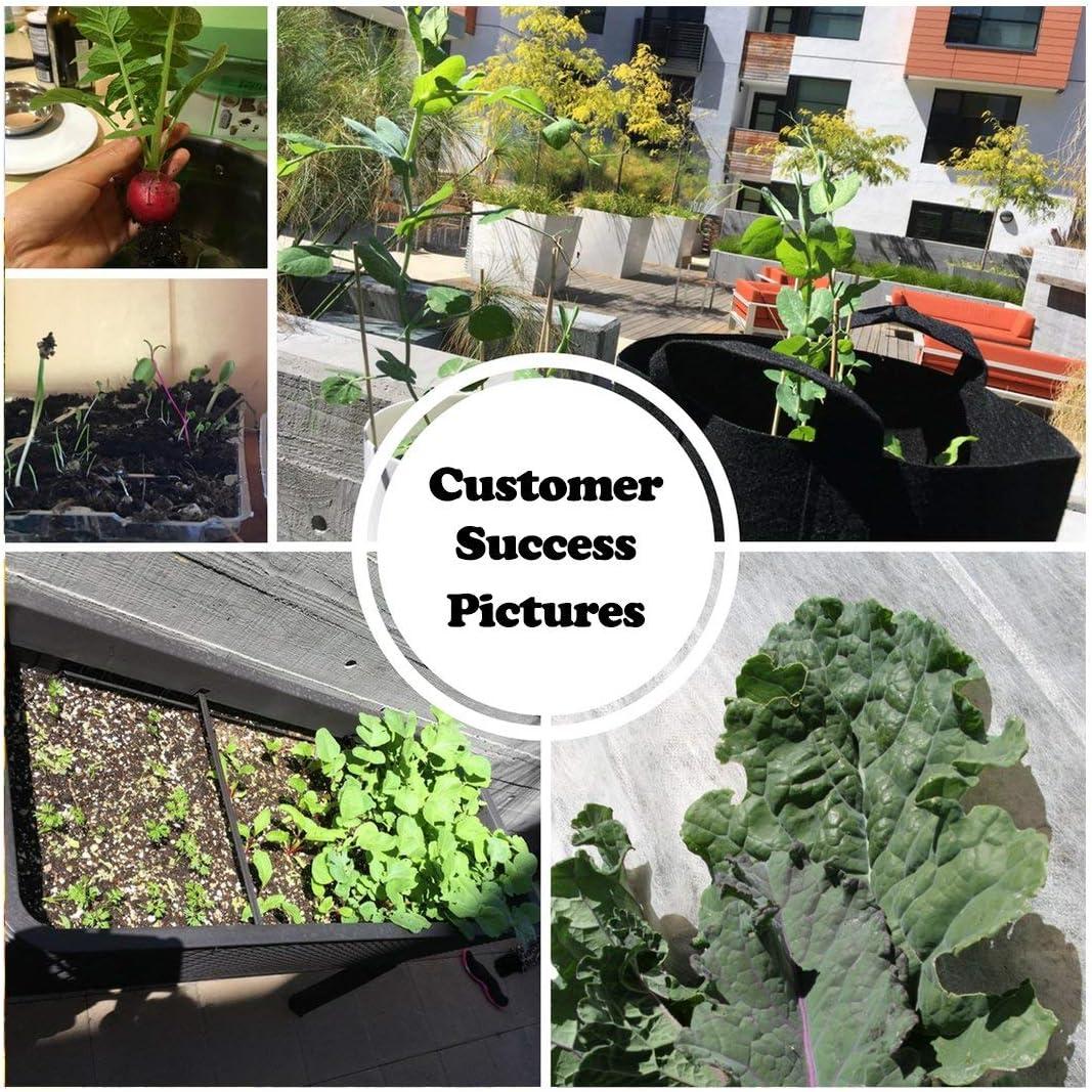 survival-garden-seeds-for-all-garden-types
