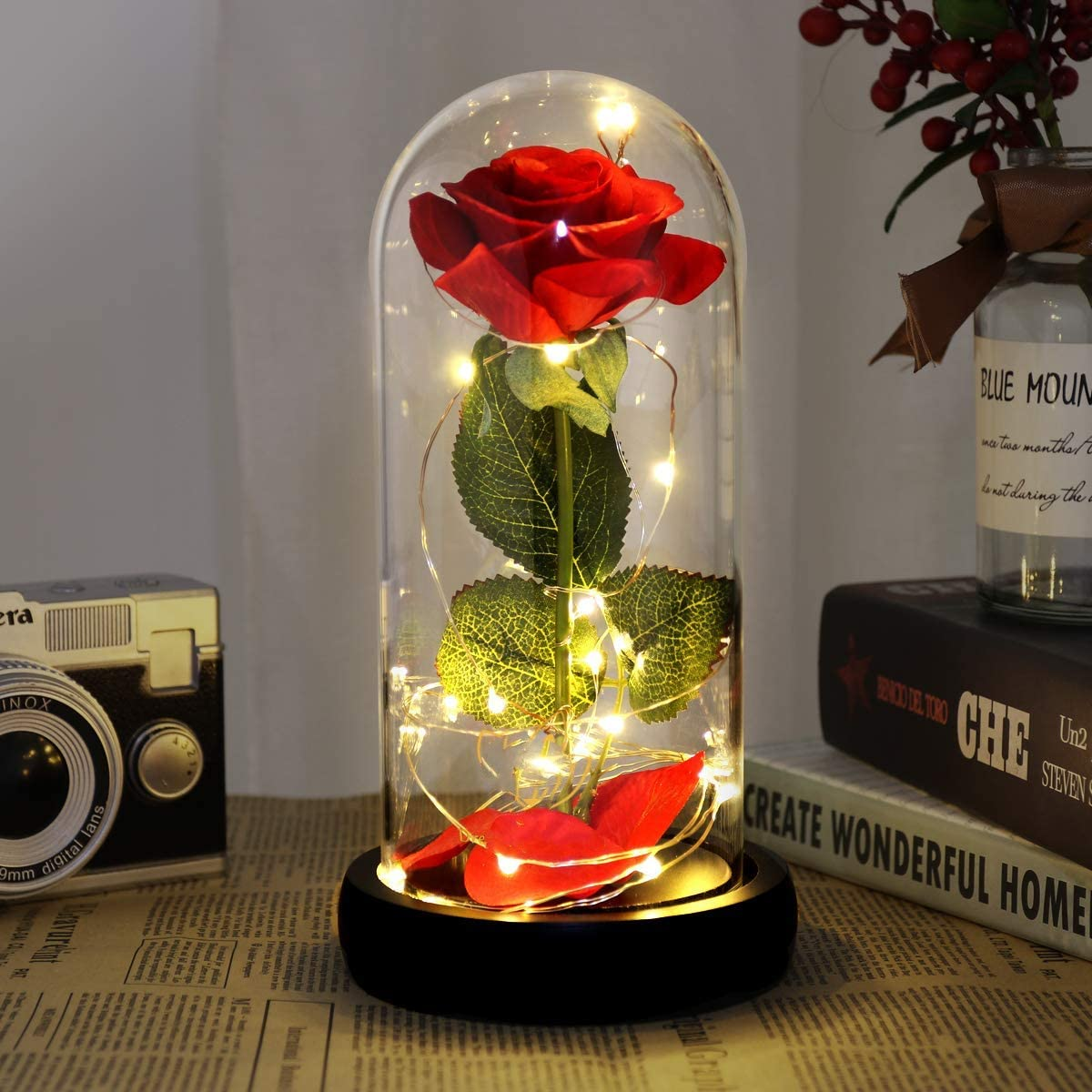 Rose Eternelle Sous Cloche Enchantée Lumière LED Dôme Bois Cadeau St Valentin