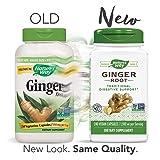 Nature's Way Premium Herbal Ginger Root, 1,100 mg
