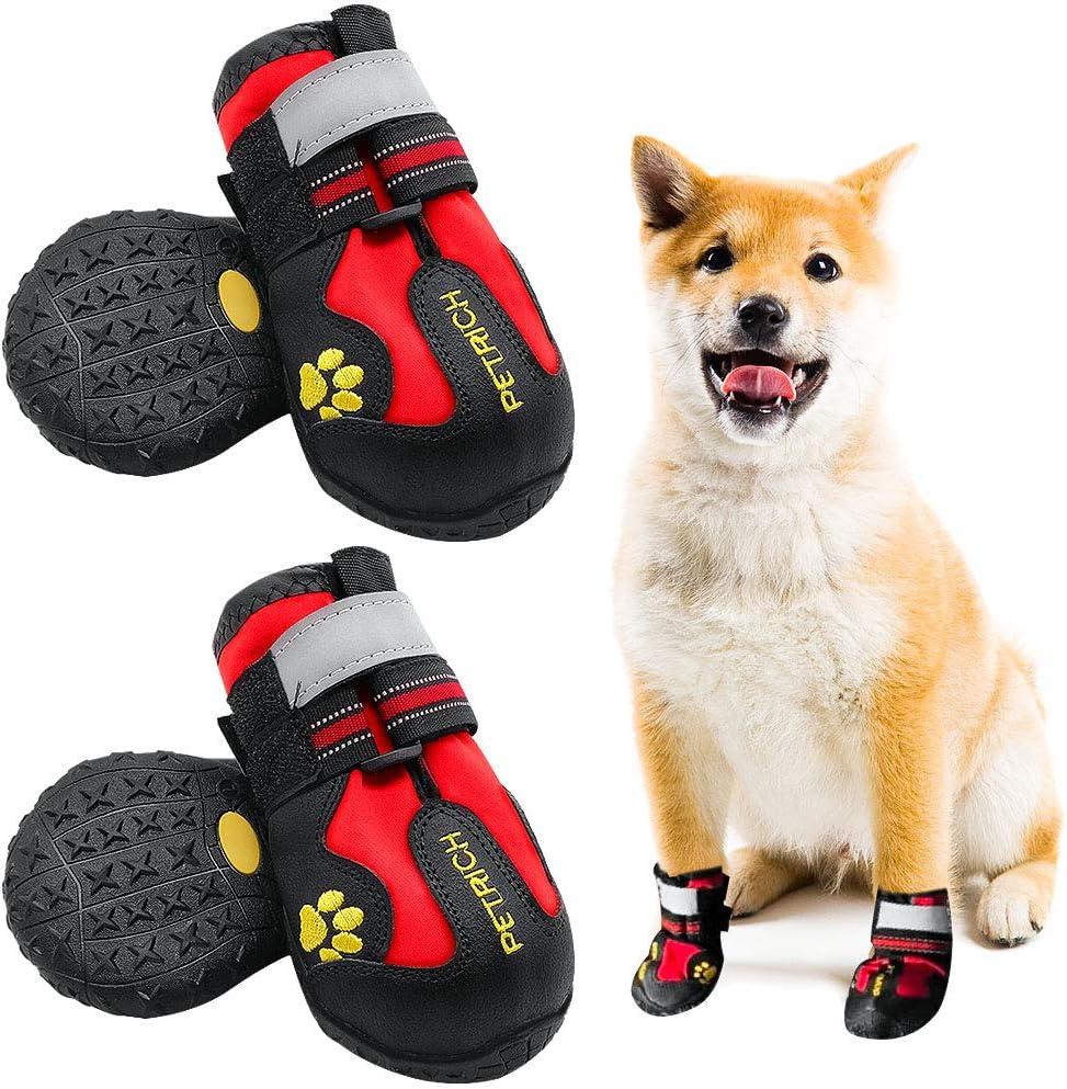 Amazon.com : Shaboo Prints Dog Shoes
