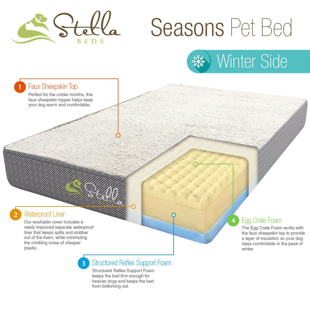 Stella Beds Elevated Memory Foam Orthopedic Dog Bed with Removable Cover