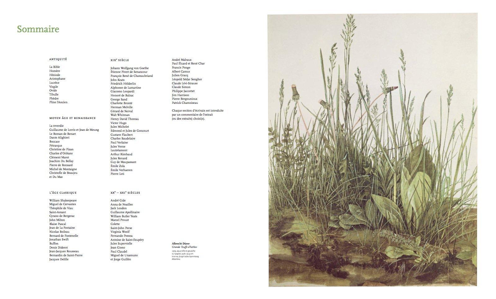 Tras la senda de Thoreau: libros, ensayos, documentales etc de vida salvaje y naturaleza. - Página 2 71g%2B%2ByZ024L