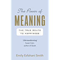 The Power of Meaning: The true route to happiness (English Edition)