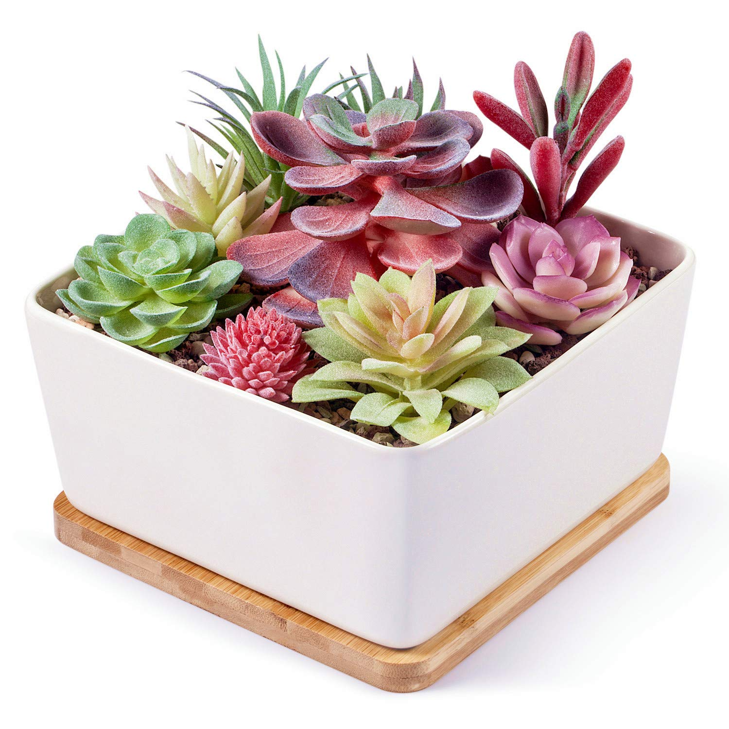 7 Inch Square White Ceramic Succulent Cactus Plants Planter Pot with Drainage Bamboo Tray (Large)