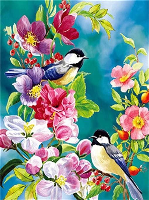 Without Frame Shukqueen DIY Paint by Numbers for Adults DIY Oil Painting Kit for Kids Beginner Four Birds 16x20 Inch