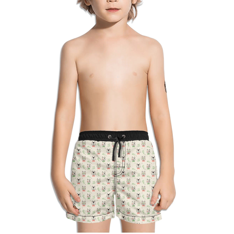 Juliuse Marthar Pug Gifts Print Swim Trunks Quick Dry Beach Board Shorts for Boys